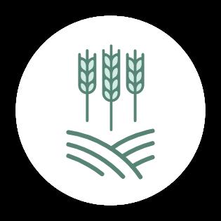 Aktualisieren Sie einmal jährlich Ihre Anbauflächen in Ihrem Profil.